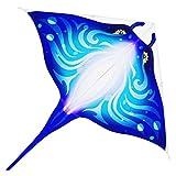 rongweiwang Marco de la Fibra de Vidrio Animal Cometa Triangular Actividad Juguete Infantil Kite Kite niños Impermeable al Aire Libre del Vuelo de los Animales, Azul