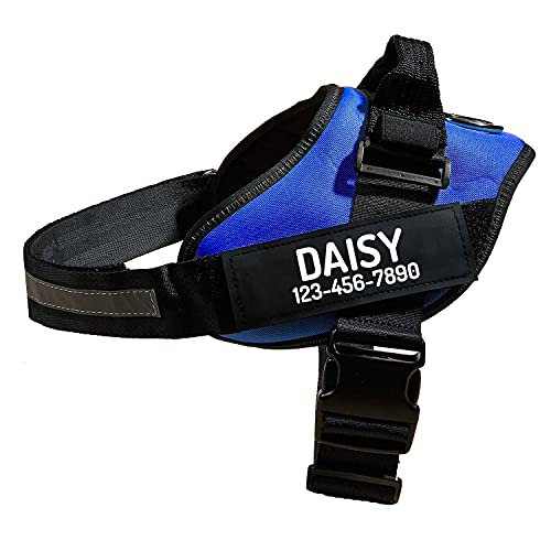 Personalized No Pull Dog Harness with Custom Name and Phone Number, Heavy Duty Medium Large Pet Vest to Prevent Tugging, Pulling, or Choking, Training and Walking