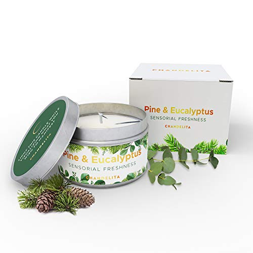 CHANDELITA Aromakerze Duftnote Kiefer und Eukalyptus zur Verbesserung unserer Aufmerksamkeit und Konzentration, Stimulation im Alltag und Befreiung der Atemwege