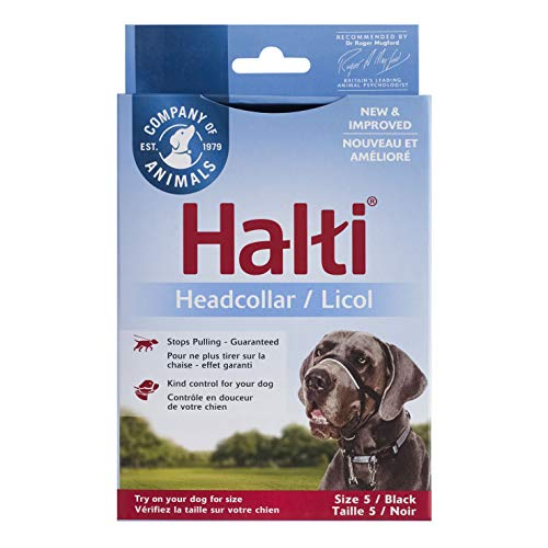 The Company of Animals Halti Head Collar, Head Halter Collar for Dogs, Head Collar to Stop Pulling for Large Dogs