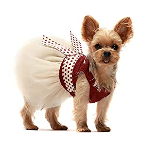 Fitwarm Retro Polka Dot Dog Dresses for Pet Clothes Party Birthday Puppy Doggie Tutu Dress Red Medium