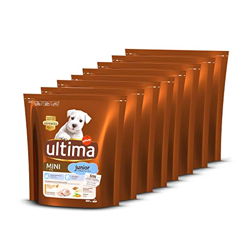 Ultima Pienso para Perros Mini Junior con Pollo - Pack de 8 x 800 g, Total: 6.4 kg