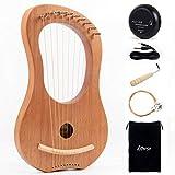 Lyre Harp, Horse 10 Metal String Bone Saddle Lye Harp Mahogany String Instrument with Tuning Wrench Extra one Set String Piezo Pickup and Black Gig Bag