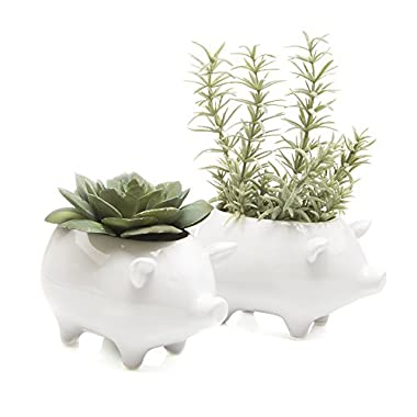 Chive - Pig Shape Succulent and Cactus Planter Pot, 3  Ceramic Air Plant, Flower and Plant Container, Cute Animal Mini Pot for Indoor / Outdoor Garden and Home Decor, Bulk Set of 2 (White)