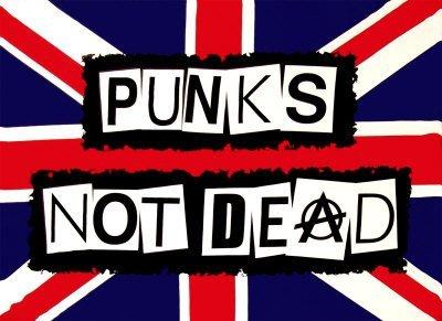 Punks Not Dead Anarchy les exploiter x3'Pavillon 5 \