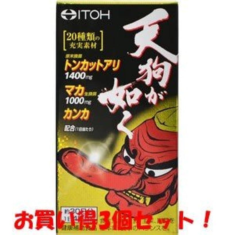 プールいわゆる鉄【井藤漢方製薬】天狗が如く 120粒(お買い得3個セット)
