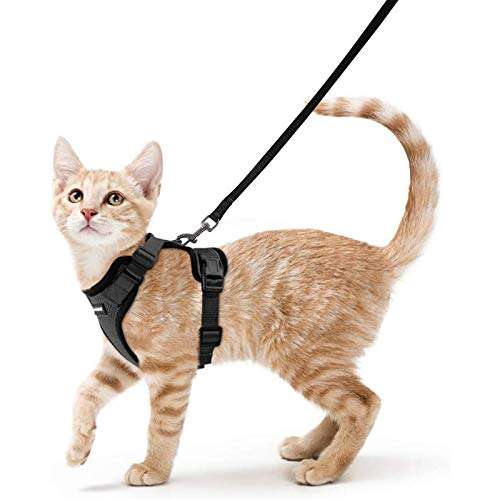 Cheap Harness