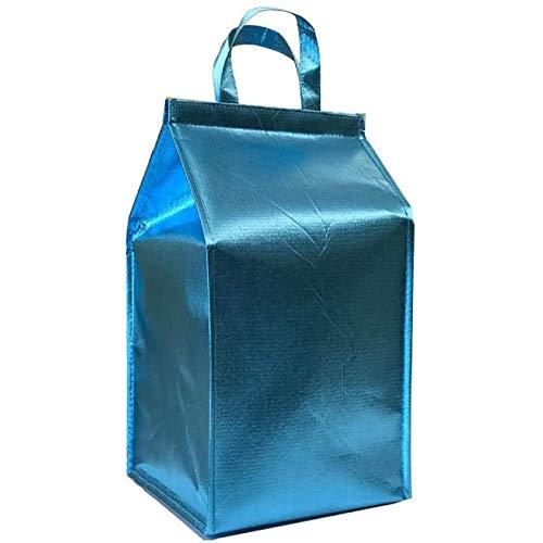 YuuHeeER 1pc bolsa de entrega de comida caliente aislada nevera caja impermeable grande de aluminio