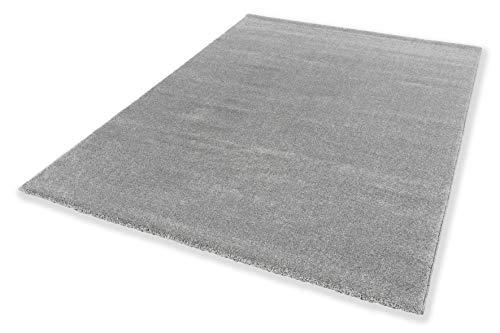 Schöner Wohnen Kollektion pflegeleichter Wohnzimmer Teppich Pure — antistatischer Flur Teppich — Kurzflor Teppich — (200x290cm, Silber)