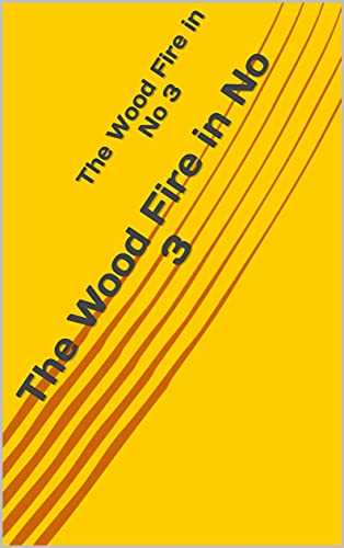 The Wood Fire in No 3 (English Edition)