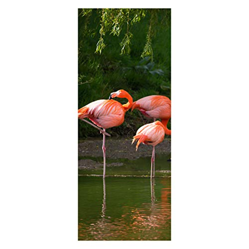 wandmotiv24 Türtapete Flamingos in einem Pool 80 x 200cm (B x H) - Dekorfolie selbstklebend Tapete, Tür-Aufkleber, Türbild, Wandbild M1009