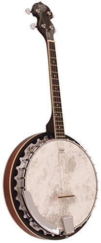 Barnes & Mullins Banjo mit 4 Saiten, bj304gt