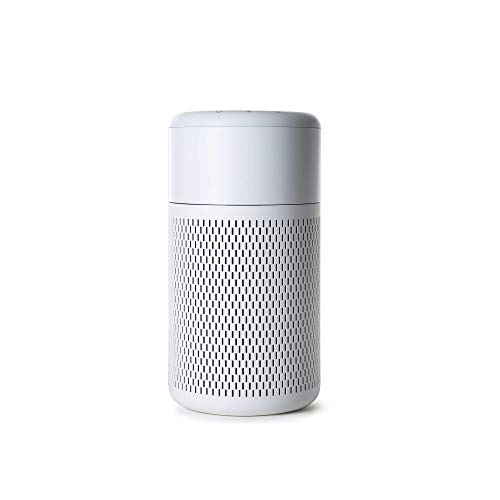 NOMA Small Air Purifier with True HEPA Filter | Portable Air Cleaner with Ionizer Switch and Washable Pre-Filter