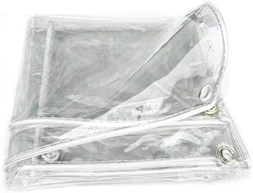 Lonas Plano de cubierta Plano transparente, plano de protección del pájaro PVC con ojales, lágrimas impermeables multifuncionales del jardín festivo, trampolín, polla de 0.3mm, 450 g / m² (Color: Clar
