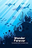 Wonder Forever: Calendar and Planner 2021, Journal, Dimension 6'x9', Planning, Physical Record, System of Organizing Days, Planned Events, Chronological List of Documents