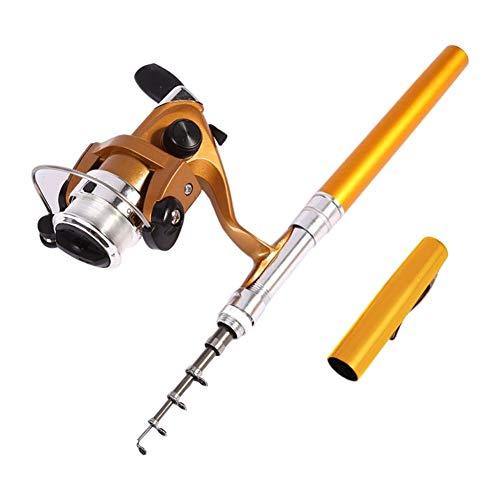 quanju cheer - Canna da Pesca Leggera a Forma di Mini Penna telescopica, Mulinello per Pesci Dorato