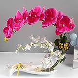 LZL Artificial orquídeas Decoración - Arreglos de Flores de imitación Phalaenopsis Phalaenopsis en Maceta con el florero de la Porcelana Bonsai Decoración for el hogar/Cocina/Dormitorio/Comedor