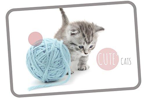 Tapis Velours imprimé 40x60 Cute Cat