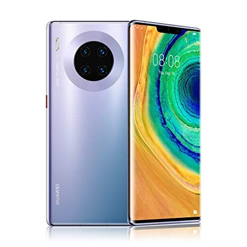 HUAWEI Mate 30 Pro Space Silver, Quadrupla Fotocamera 40+40+8MP e Sensore TOF 3D, Display Horizon 6.58