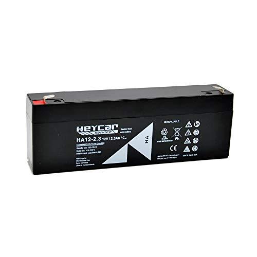 HEYCAR - Batería de Plomo AGM para aplicaciones estacionarias. 12V / 2,3Ah. Capacidad de descarga 34,5A 0,9 Kg. 178 x 34 x 60 mm