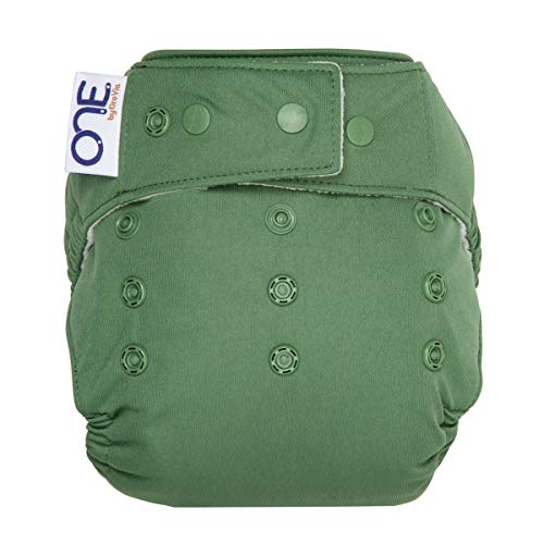 Product Image of the GroVia O.N.E. Reusable Baby Cloth Diaper (Abalone)