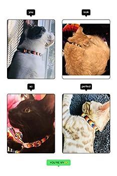 Accessoires pour Animaux Waaag, (Aztèque Tribal) Collier pour Chat, Collier pour Chien, Laisse pour Chat, Laisse pour Chien, Harnais pour Chien (Collier, XS)
