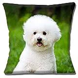 SLobyy Cute Bichon Frise Puppy Dog Photo Print Green White 16' Pillow Cushion Cover