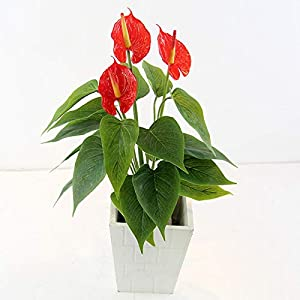 Artificial Anthurium Lily Flowers for Home Decor Bouquet and Green Leaf and Bridal Wedding Festival Decoration Small Flower Flower Arrangement,UV Resistant No Fade