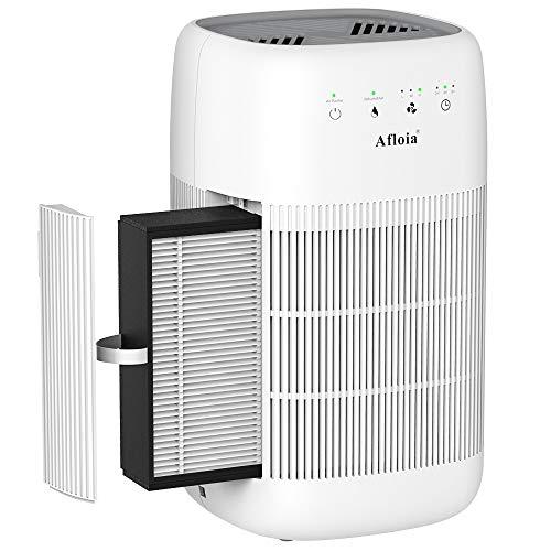 Afloia Deumidificatore purificatore d'aria per la casa, capacità deumidificatori elettrici 1000 ml, vero purificatore d'aria HEPA portatile per bagno, cantina, cantine, appartamento, garage