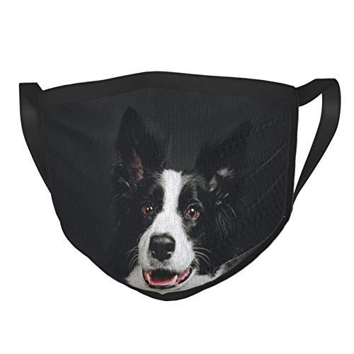 Junge Border Collie Hund l?chelnd Happy Adult Black Rim Mask Atmungsaktives Netzgewebe, waschbar und wiederverwendbar Sturmhaube schwarz