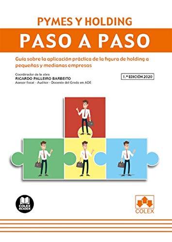 Pymes y Holding. Paso a paso: Guía sobre la aplicación práctica de la figura de holding a pequeñas y medianas empresas: 1