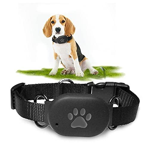 Toolbooth Pet GPS Rastreer Collar para Perro y Gato, Pet Cracker GPS Locater Finder, Mini GPS de Lluvia gsm AGPS WiFi Localizador de Mascotas en Tiempo Real Compatible (Color : Blue)