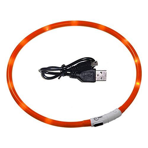 GREENTREEN Collare di Cane LED, Collare per Cane LED Lampeggiante, Collare di Sicurezza Ricaricabile USB per Tutti i Cani, Misura Regolabile Adatto (Rosso)