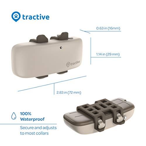 Tractive LTE rastreador de Perros GPS – Localizador de Actividad para Perros con Rango Ilimitado (Modelo más Nuevo), Beige (TRNJA4)