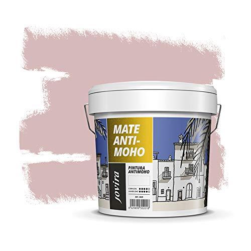 PINTURA ANTIMOHO, evita el moho, resistente a la aparición de moho en paredes, aspecto mate. (5 KG, ROSA PALIDO)