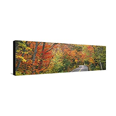 Road Passing Through a Forest, U.S. Route 41, Keweenaw County, Keweenaw Peninsula, Michigan, USA, Stretched Canvas Print, 42x14 in
