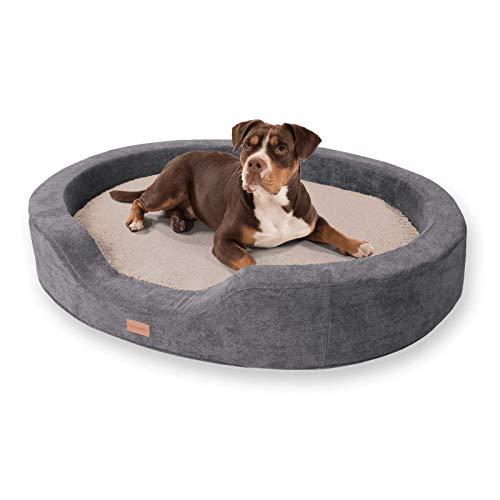 brunolie Lotte - Cama ovalada para perro en color beige, lavable, ortopédica y antideslizante, con espuma viscoelástica transpirable, tamaño XL, 120 x 100 cm