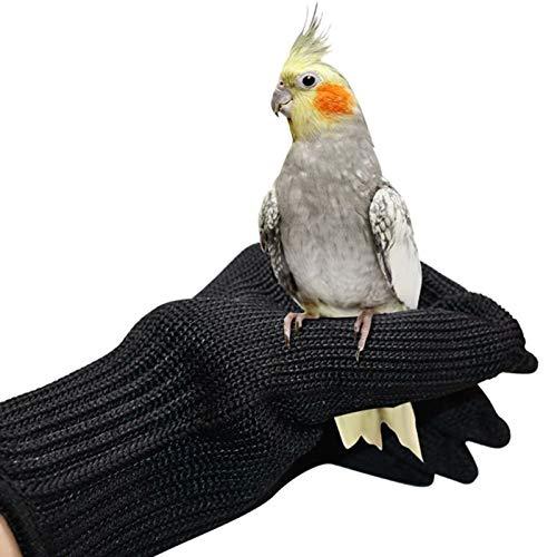 SH-RuiDu Guantes antimordedura para entrenamiento de pájaros, guantes de manejo de animales pequeños, guantes de alambre de acero de protección