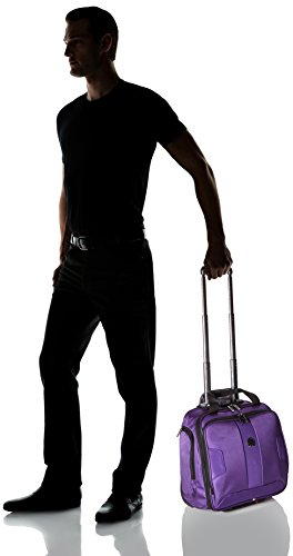 Delsey Paris Luggage Sky Max 2 Wheeled Underseater, Purple