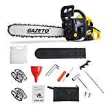 62CC Chainsaws,20inch Gas Chainsaw,2 Cycle Engine 3.5HP Handheld Cordless Pertrol Gasoline Full Crank Safety Chain Saw for Farm,Yard,Cutting Wood Tree with Tool Kit,Ranch Chainsaw with Heavy Duty Case