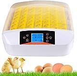 Couveuse Incubateur 56 œufs automatique Incubateur automatique Avec éclairage LED à affichage numérique et contrôle efficace et intelligent de la température et de l'humidité (56 œufs + LED)