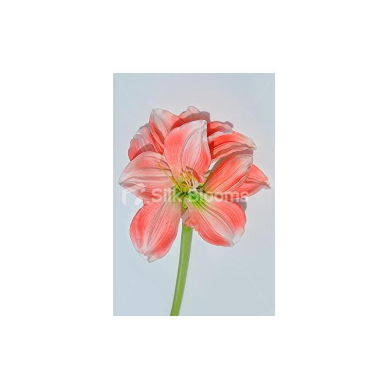 silk flower arrangements silk blooms ltd artificial fresh touch peach amaryllis single stem loose flower