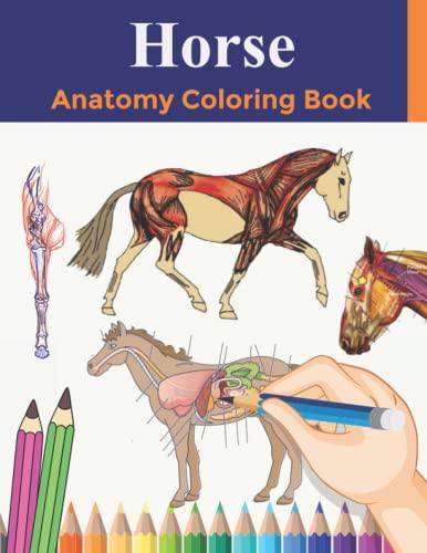 Horse Anatomy Coloring Book: An ...
