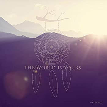 The World Is Yours  Chillum Remix