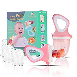 Daddycare Baby Fruit Feeder Pacifier Review