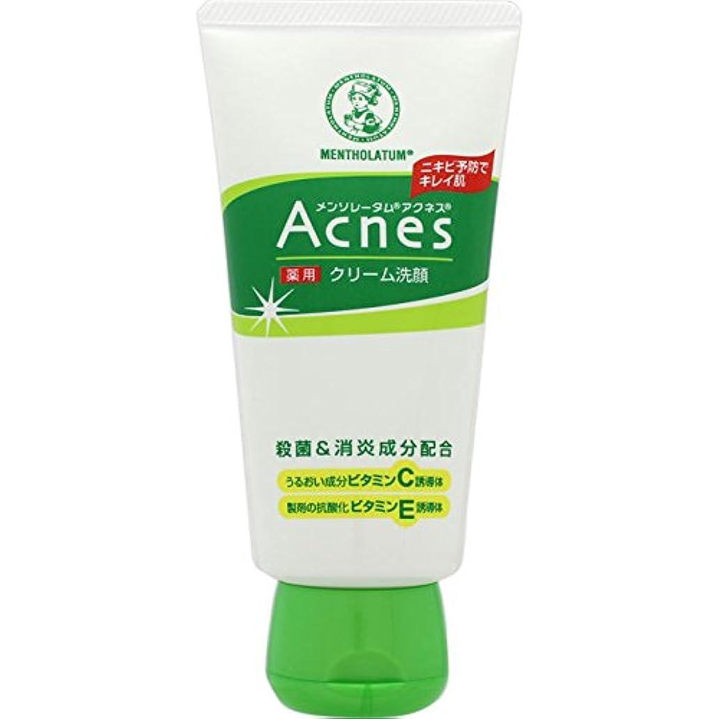 理論葉っぱ協力的アクネス 薬用クリーム洗顔 130g【医薬部外品】