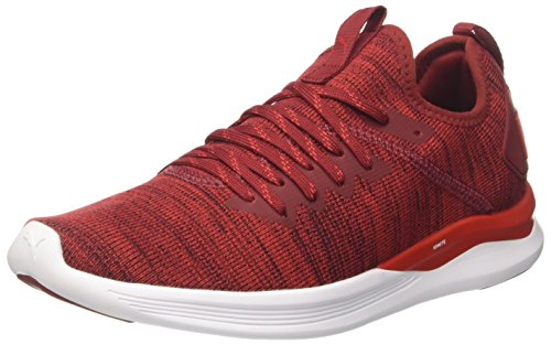 Puma Herren Ignite Flash Evoknit Cross-Trainer, Rot (Red Dahlia-High Risk Red-Puma White 01), 44 EU