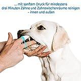 Bogadent UBO0704 Anti-Plaque Finger Adult Hund, 2 Stück - 4