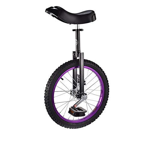 """SYCHONG 18\"""" Zoll-Rad Einrad Leakproof Rad Radfahren Outdoor Sport Fitness-Übungs-Gesundheit,Lila"""