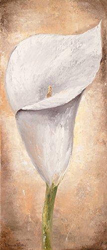 Digitaldruck / Poster Lenna Lotus - Calla Lilly III - 40 x 93.2cm - Premiumqualität - Kalla, Blume, Blüte, Pflanze, Treppenhaus, Wohnzimmer, Esszimmer, weiß - MADE IN GERMANY - ART-GALERIE-SHOPde